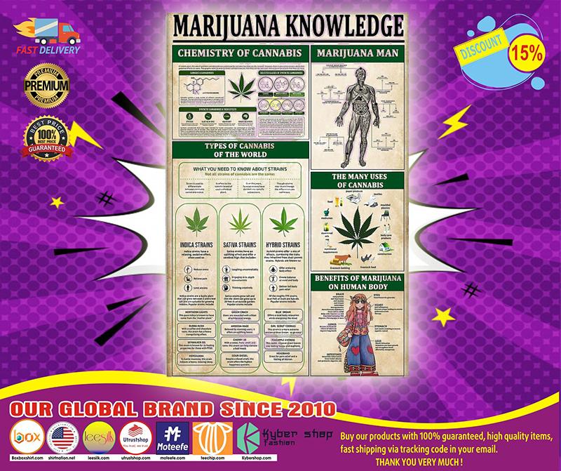 Marijuana knowledge poster 4