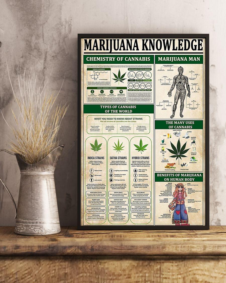 Marijuana knowledge poster 2