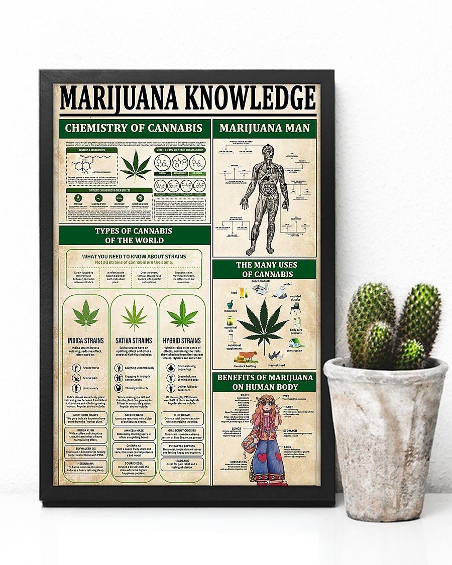Marijuana knowledge poster 1