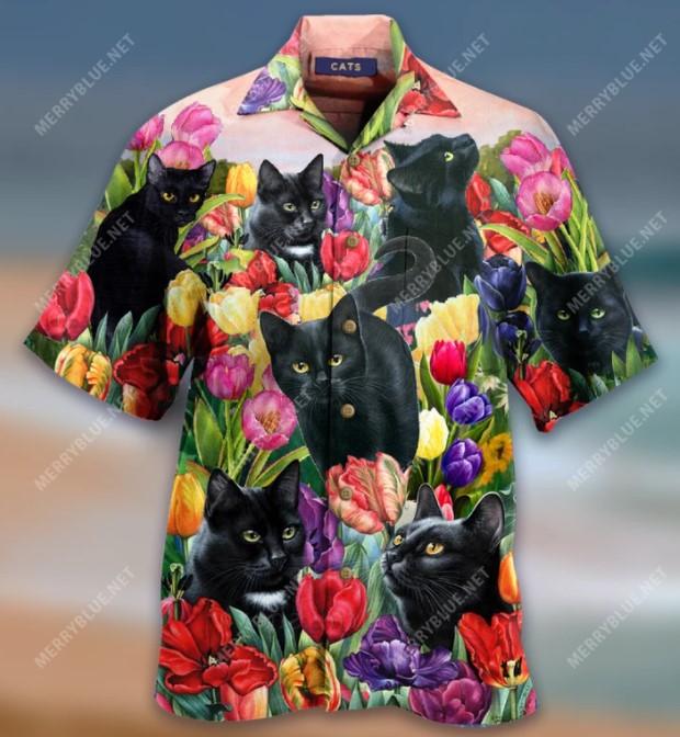 Cat dream and tulip garden hawaiian