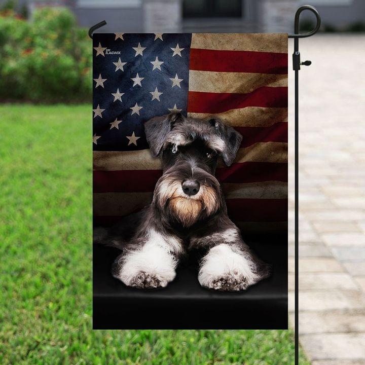 Miniature schnauzer American flag