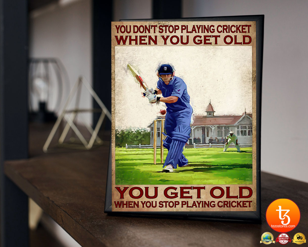 You don't stop playing cricket when you get old poster 17