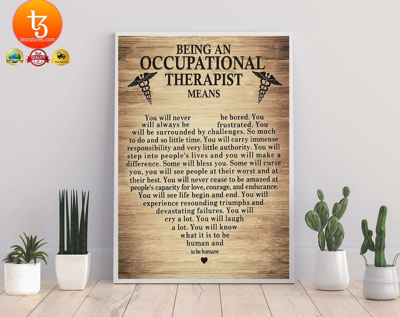 Being an occupational therepist means poster 19