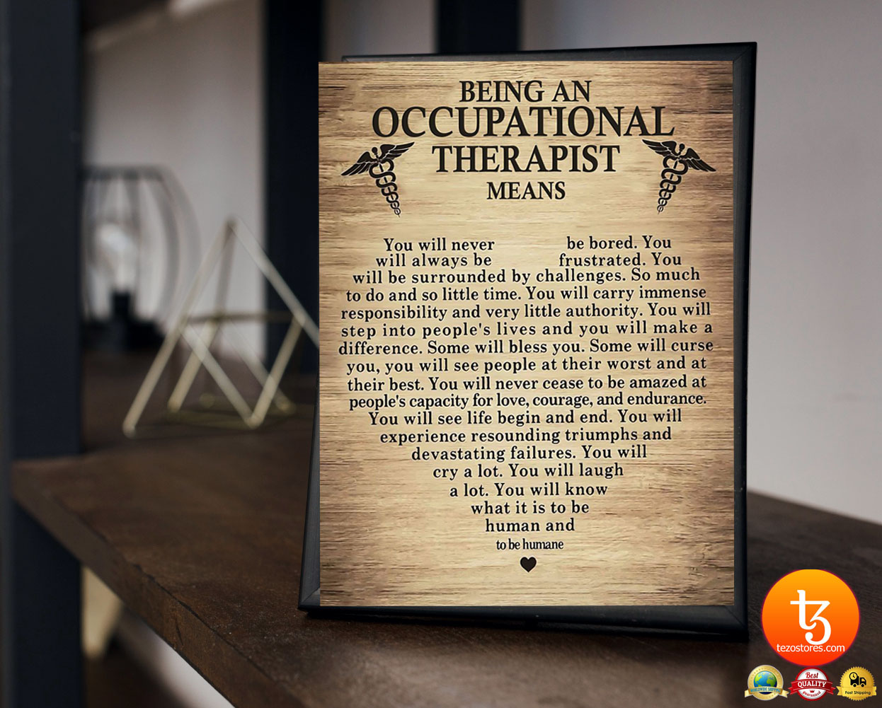 Being an occupational therepist means poster 17