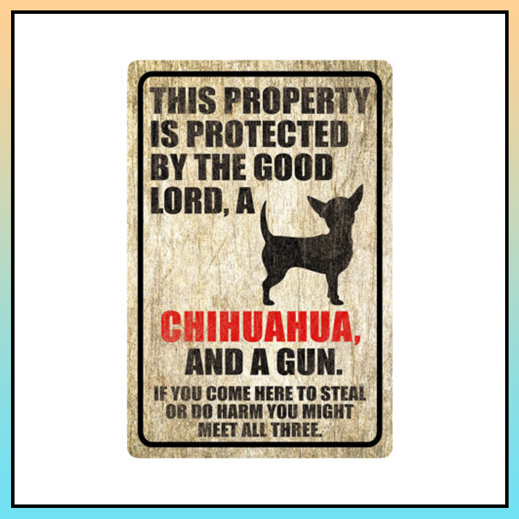 11 This property is protected by good lord a Chihuahua Dog Metal Sign 3 1