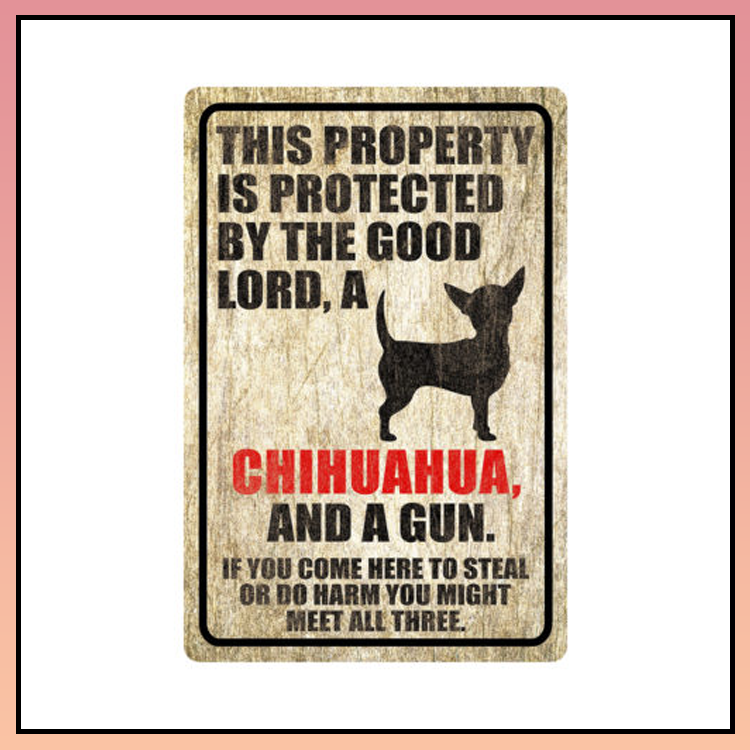 11 This property is protected by good lord a Chihuahua Dog Metal Sign 4 1