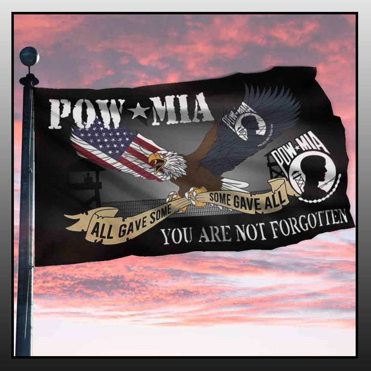 2 Eagle pow mia all gave some you are not forgotten flag 2 1