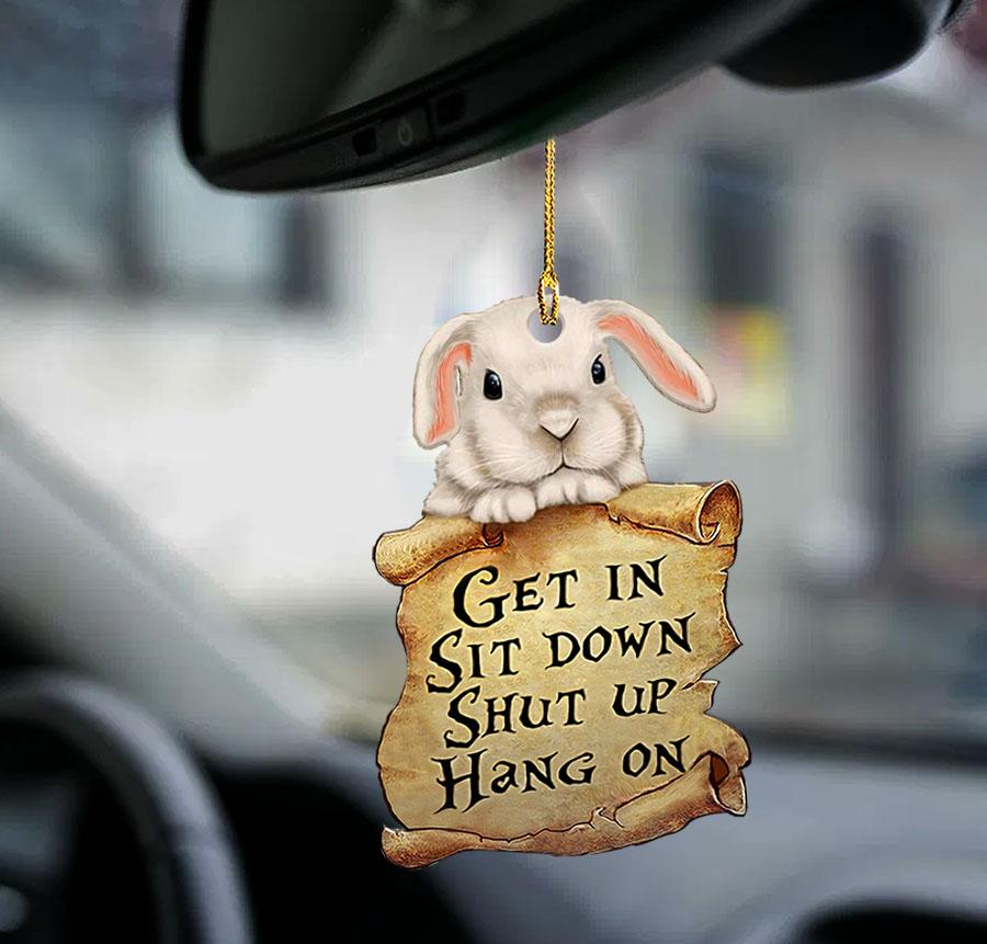 Bunny get in sit down shut up hang out ornament1