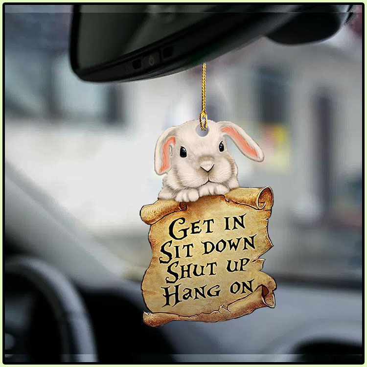 Bunny get in sit down shut up hang out ornament4