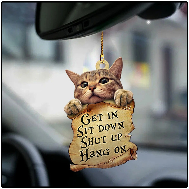 Cat get in cat lover two sided ornament2