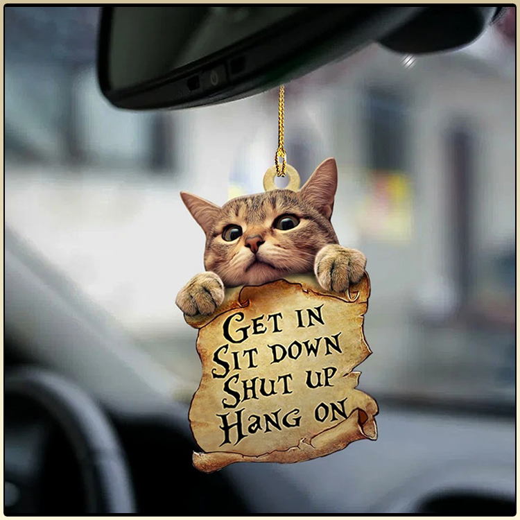Cat get in cat lover two sided ornament4