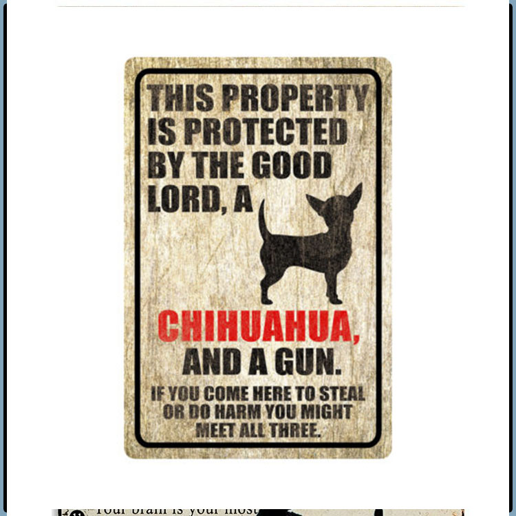 Chihuahua This Property Is Protected By The Good Lord A Chihuahua And A Gun 5