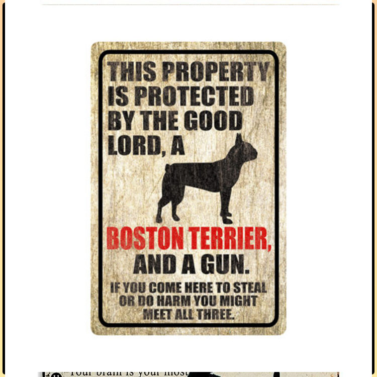 Dog This Property Is Protected By The Good Lord A Boston Terrier And A Gun 1
