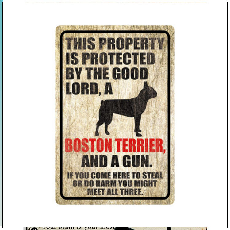 Dog This Property Is Protected By The Good Lord A Boston Terrier And A Gun 3