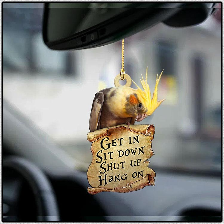 Grey Cockatiel get in sit down shut up hang out ornament4