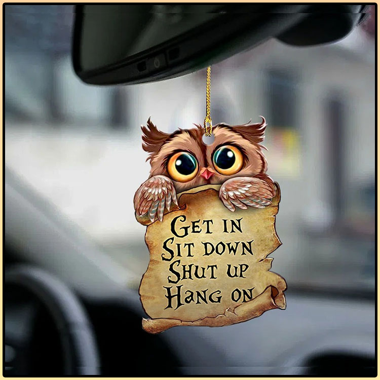 Owl get in owl lover two sided ornament4