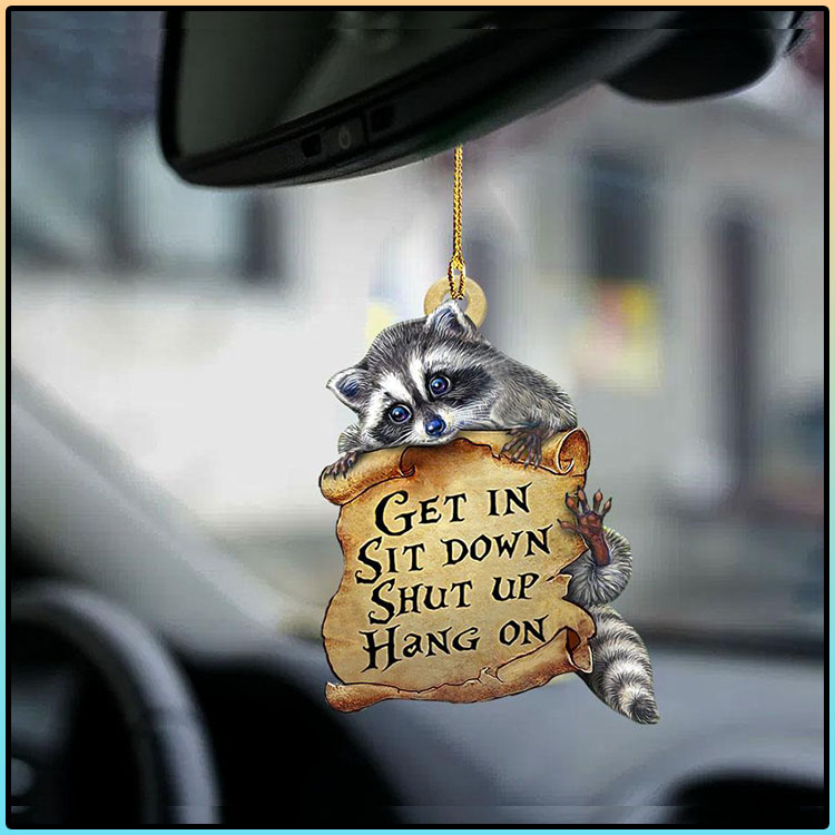Raccoon get in raccoon lover two sided ornament4