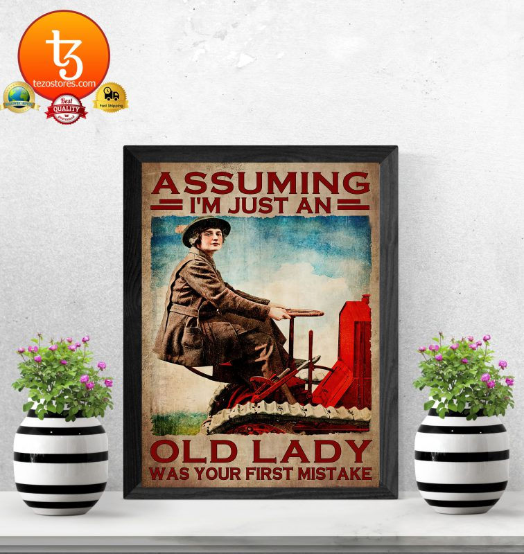 Assuming Im just an old lady was your first mistake poster3 1