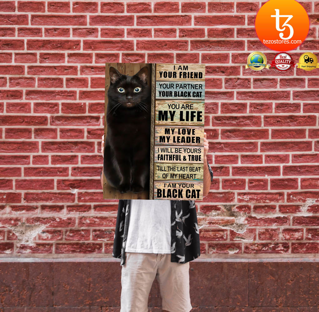 Cat I am your friend your partner your black cat you are my life poster 24