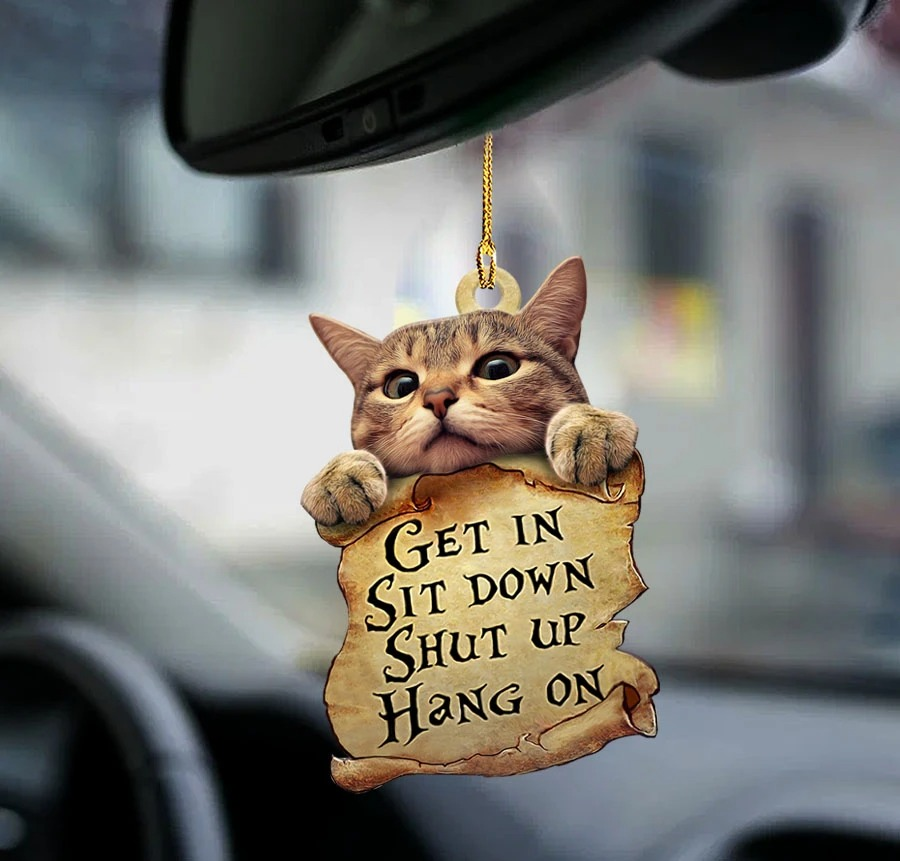 Cat get in cat lover two sided ornament1