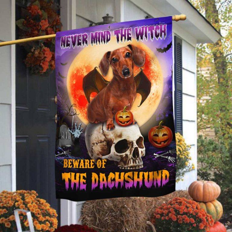Halloween skull never mind the witch beware of the Dachshund flag