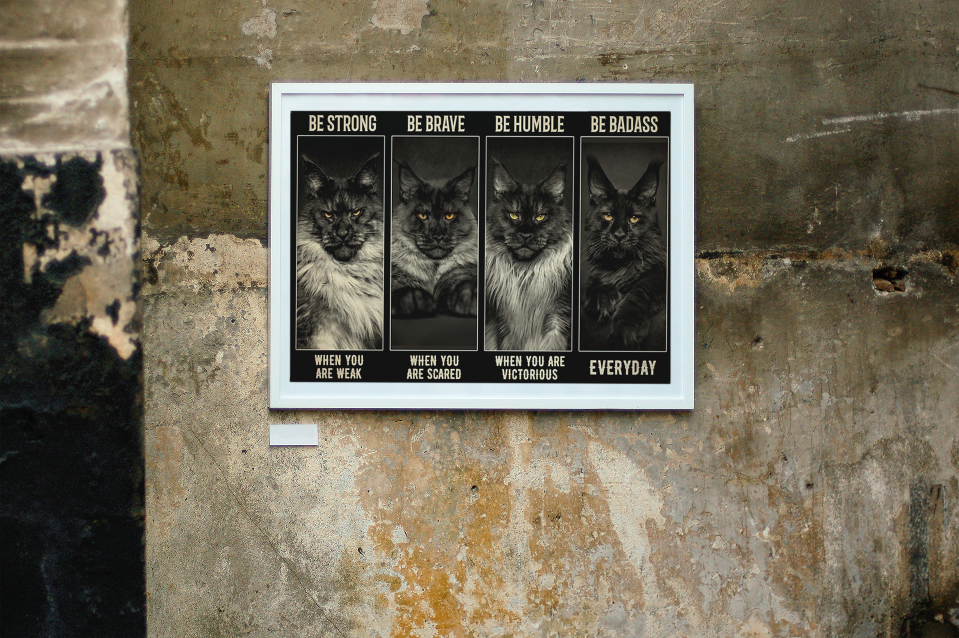 Maine Coon Cat be strong be brave be humble be badass poster11