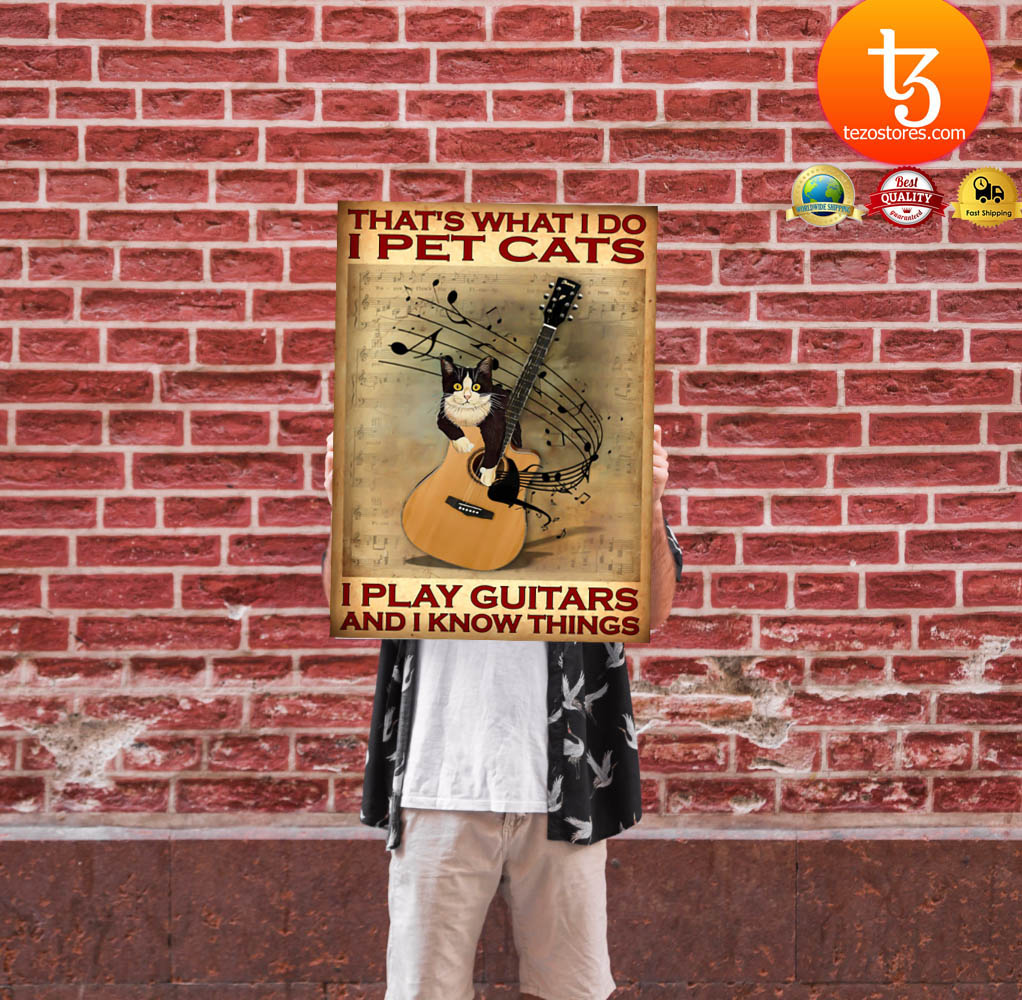 That's what I do I pet cats I play guitars and i know things poster 11